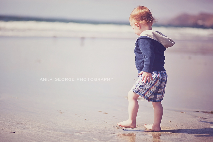 Madison WI family photographer - Anna George Photography - www.annageorgephoto.com