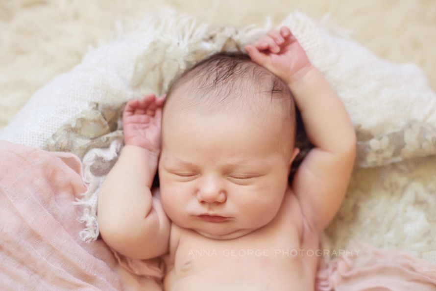 Madison wi newborn photography anna george photography www annageorgephoto com