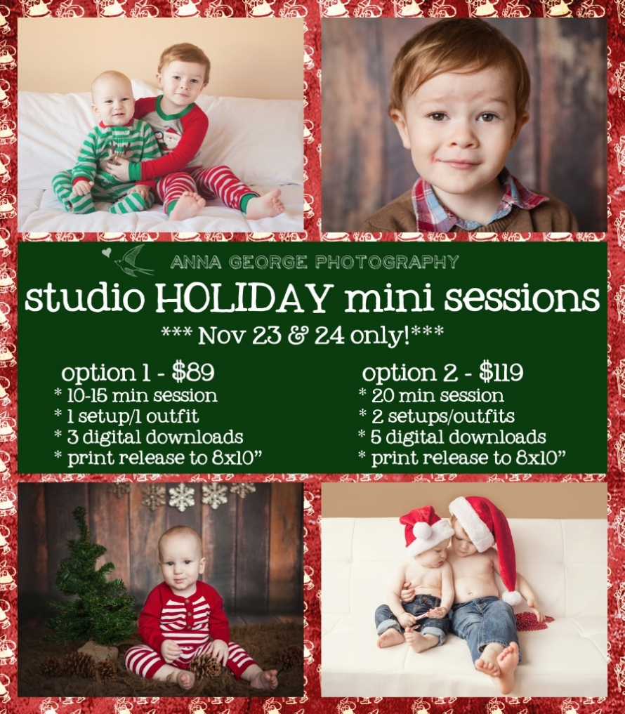 Madison WI holiday and christmas mini session photography