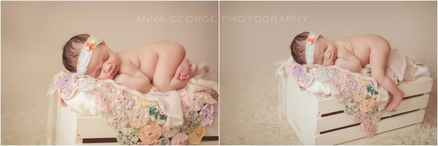 Madison WI newborn photography - Anna George Photography - www.annageorgephoto.com