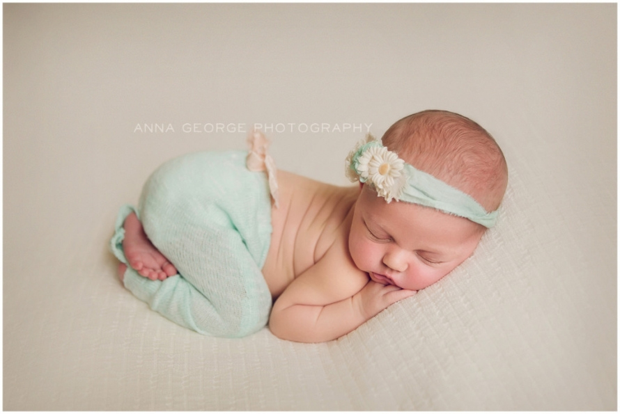 Madison wi newborn photographer anna george photography www annageorgephoto com roxanne