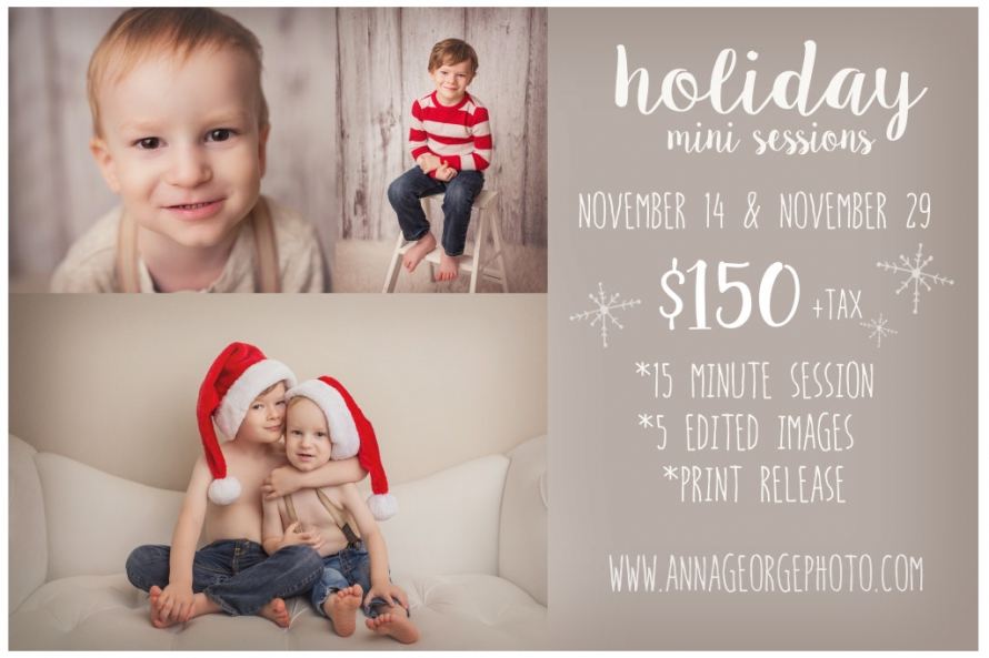 Madison WI 2015 Holiday Mini Sessions with Anna George Photography - www.annageorgephoto.com