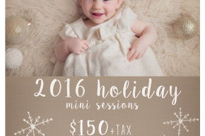 madison wi holiday mini sessions - anna george photography - www.annageorgephoto.com